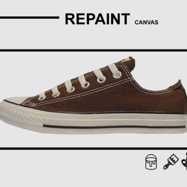 Repaint Canvas - Floki - Shoe and Bag Treatment